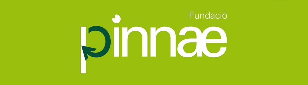 """El programa """"Actua Dona"""", ganador de la III Convocatoria de Impulso Social por el Territorio de la Fundació Pinnae"""