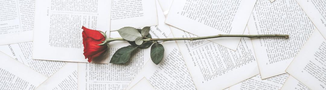 Roses, manualitats i textos per al Sant Jordi 2021